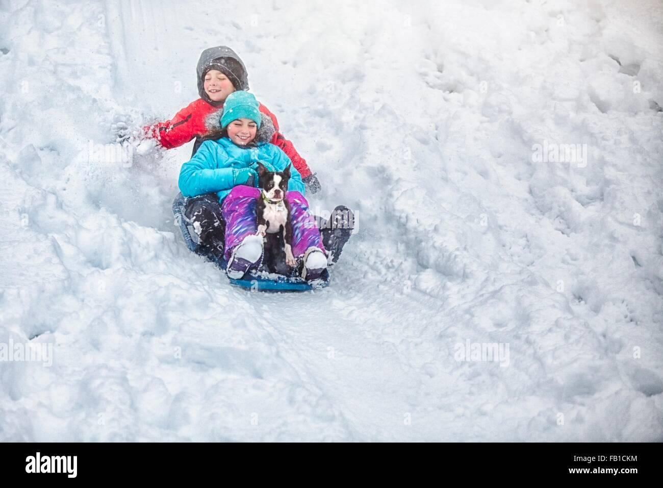 Hermano y hermana trineo con Boston Terrier cachorro en laderas cubiertas de nieve sonriente Imagen De Stock