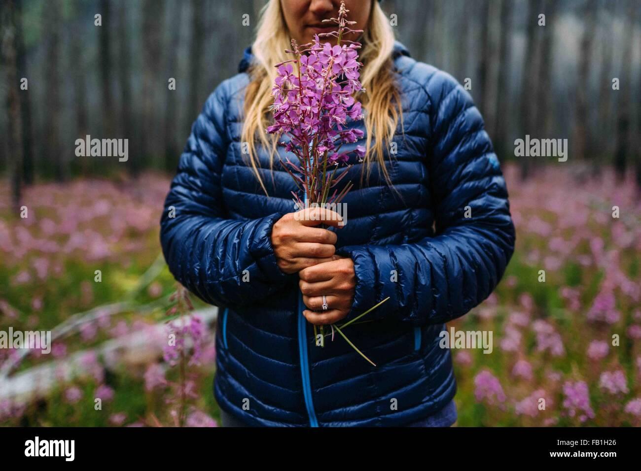 Vista recortada de mediados de mujer adulta vistiendo capa acolchada sosteniendo flores silvestres, el lago Moraine, Imagen De Stock