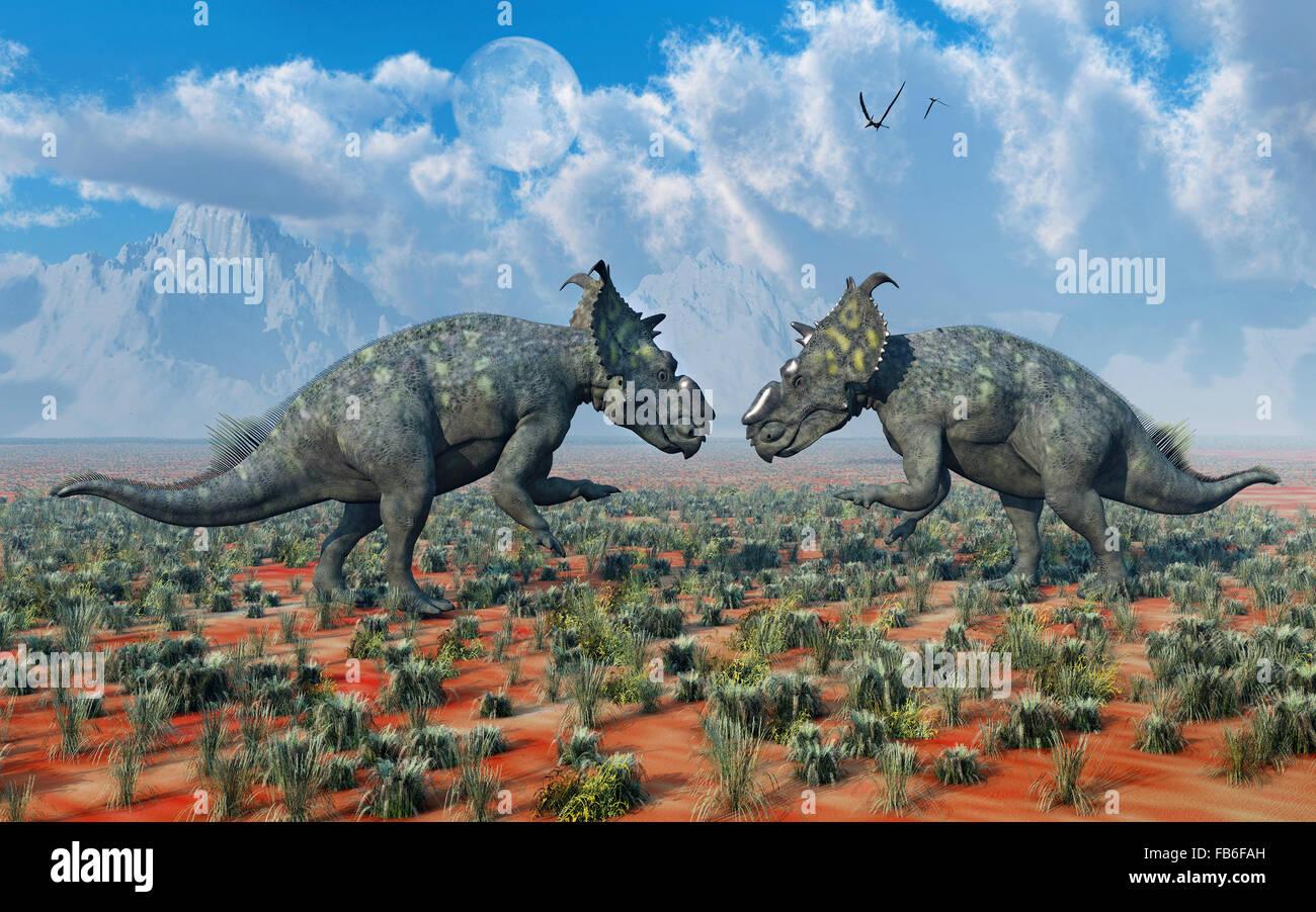 Un par de Dinosaurios Pachyrhinosaurus , en una disputa territorial. Foto de stock