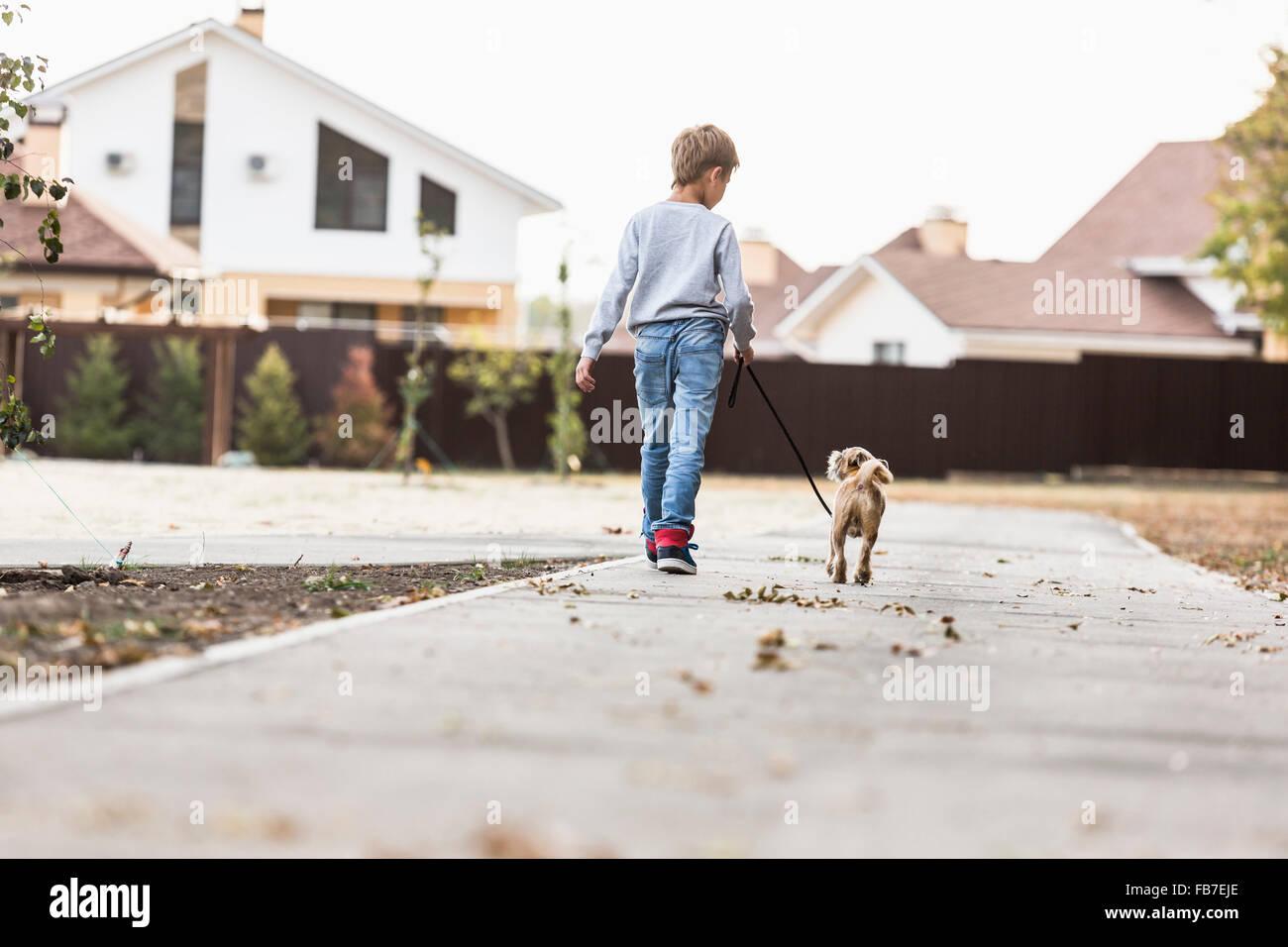 Vista trasera del muchacho caminando con el perro en la acera Imagen De Stock