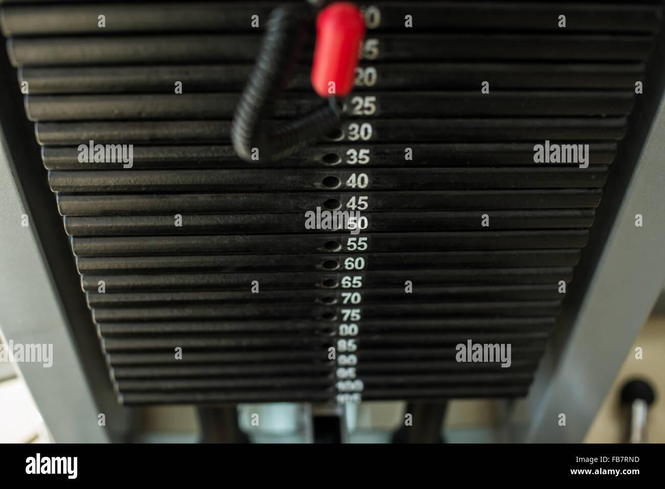 Aparatos de entrenamiento en el gimnasio. Imagen De Stock