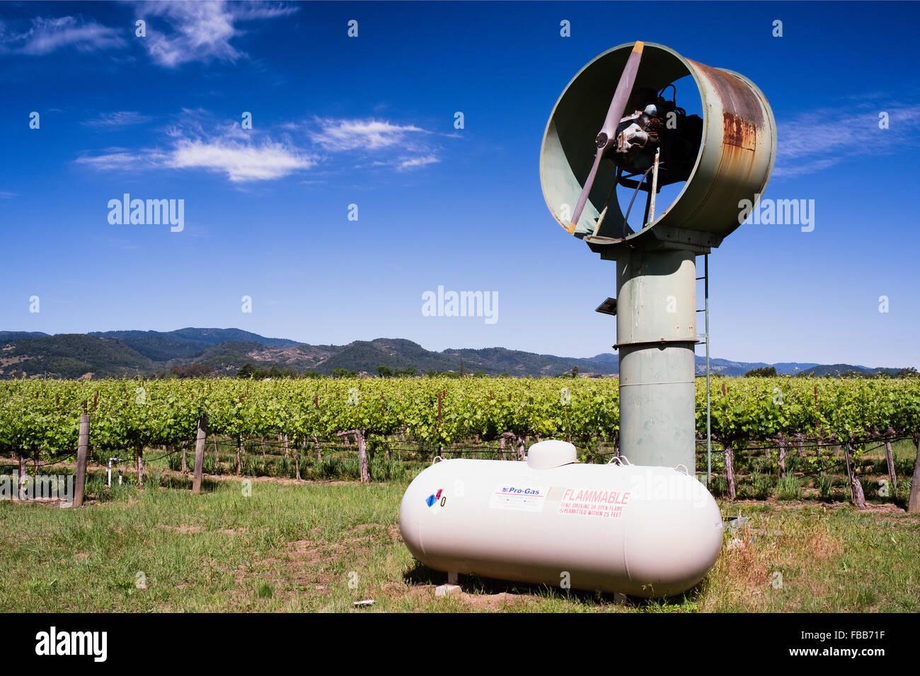 Ángulo de visión baja de un machine del viento en un viñedo, Calistoga, Napa Valley, California. Imagen De Stock