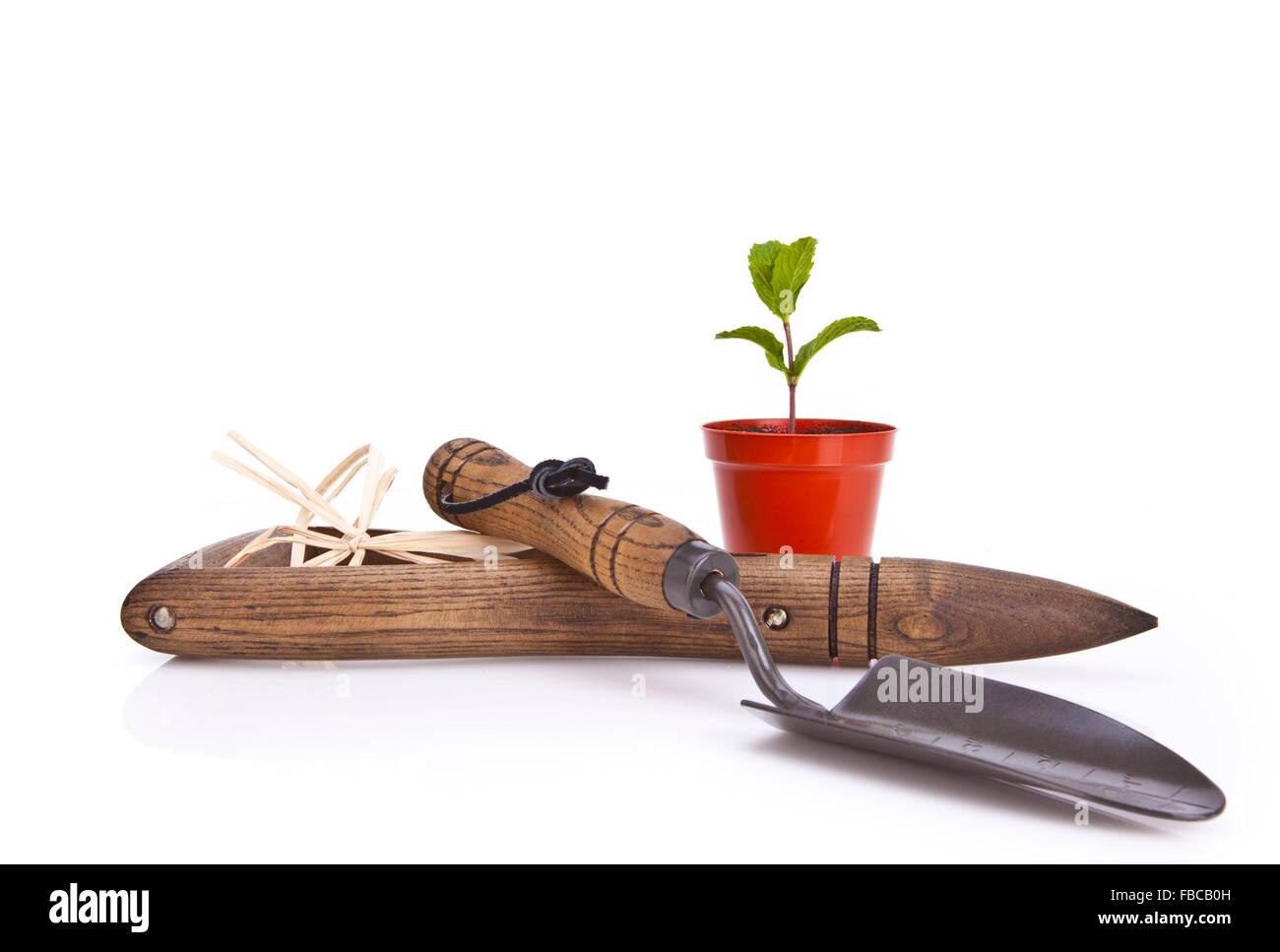Herramientas de jardinería y la maceta sobre fondo blanco. Foto de stock