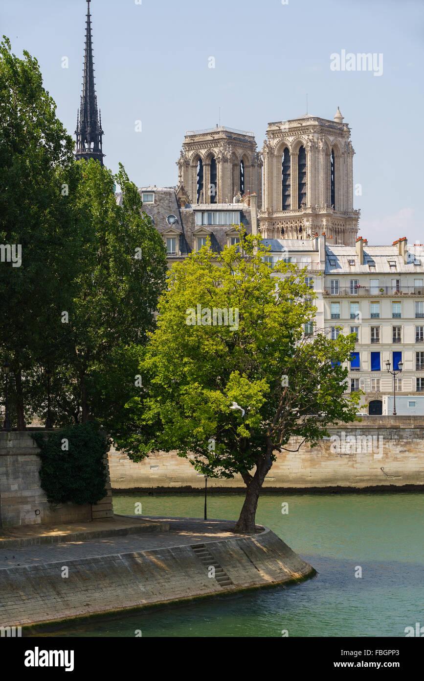 Punta de Ile Saint Louis con torres y aguja de la Catedral de Notre Dame en la Ile de la Cite, junto al río Sena en verano Foto de stock