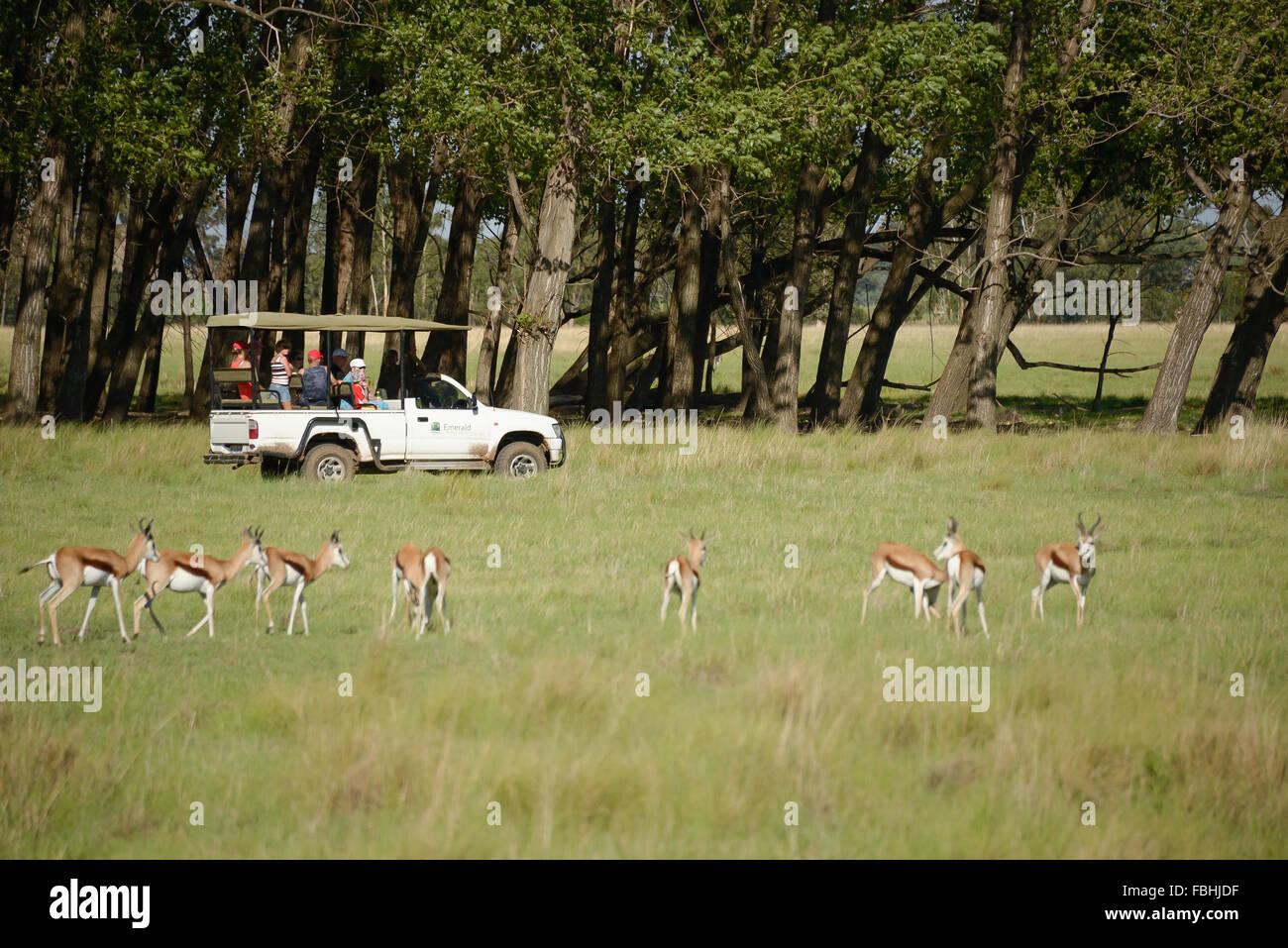 Juego de Mundo Animal Park, Esmeralda Resort & Casino, Municipio Emfuleni Vanderbijlpark, Gauteng, República Imagen De Stock