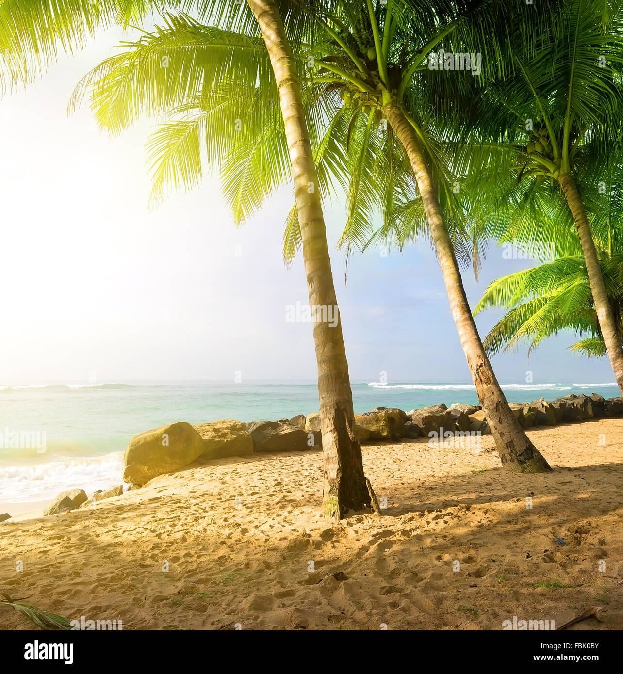 Amanecer en una playa de arena, cerca del mar en Gala Foto de stock