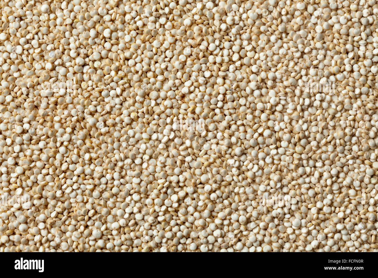 Semillas de Quinoa cruda full frame Imagen De Stock