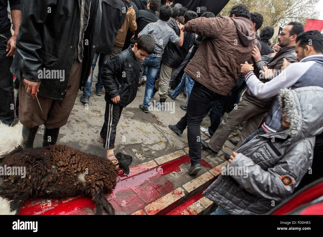 Sacrificio ritual en Kashan furing Ashura, Irán. Imagen De Stock