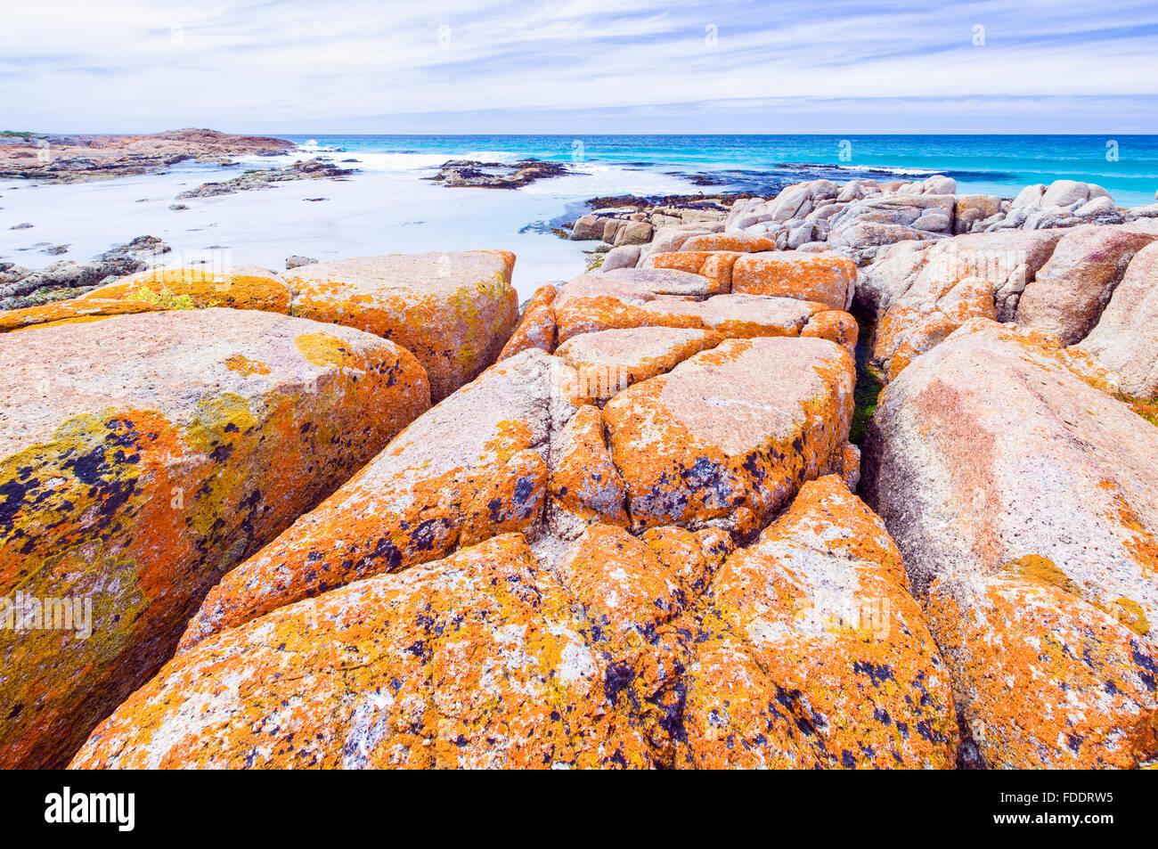 El amable playas de la península Freycinet,Tasmania mostrando rocas cubiertas de líquenes y naranja Imagen De Stock