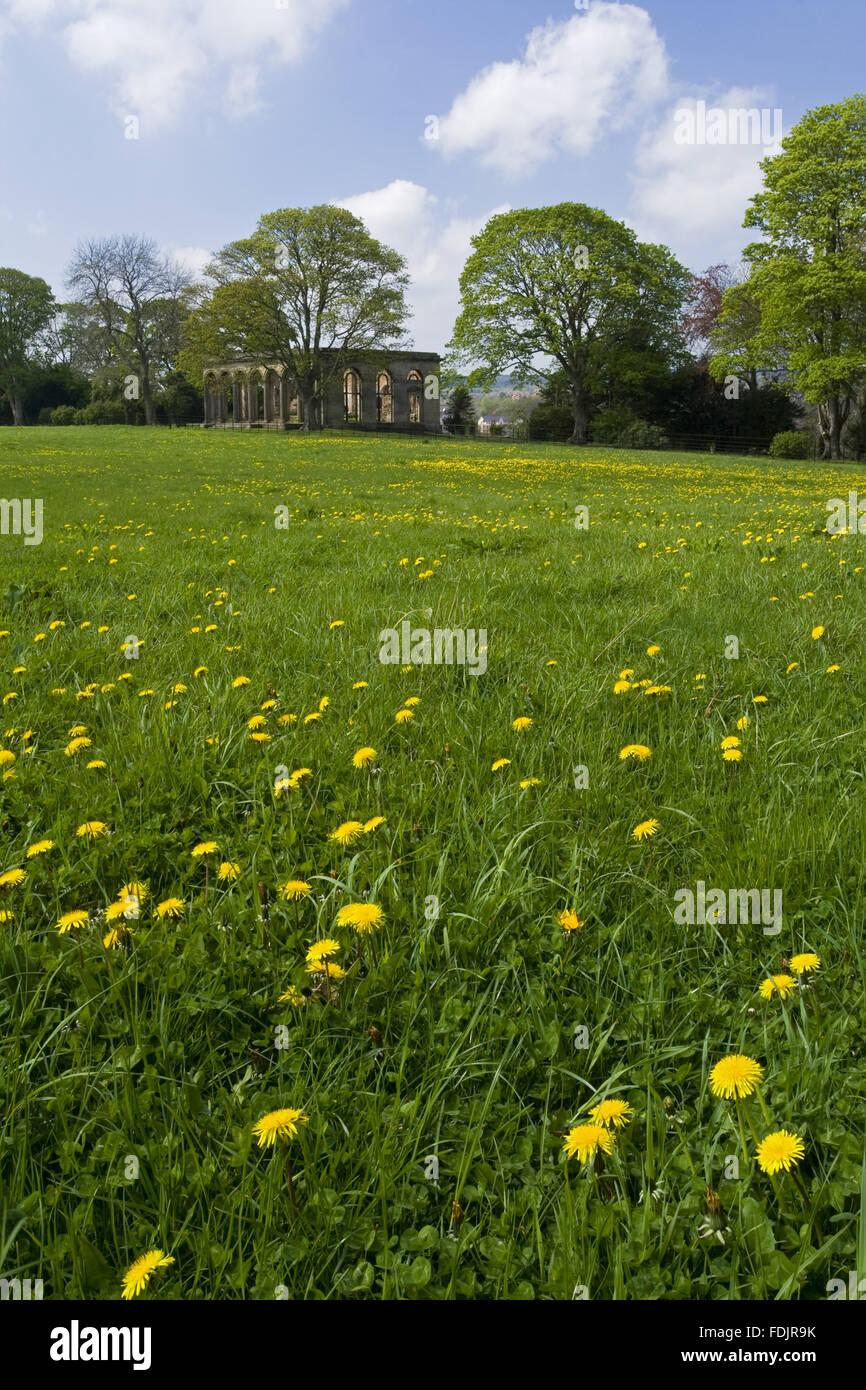 Vista a través de una pradera a wildflower el invernadero en Gibside, Newcastle upon Tyne. George Bowes heredó la finca en 1722 y los jardines paisajísticos Gibside Hall. Foto de stock