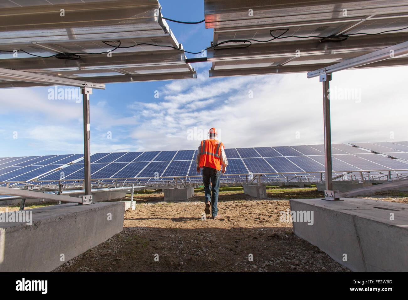 Ingeniero de energía caminando hacia la matriz de energía solar fotovoltaica Imagen De Stock