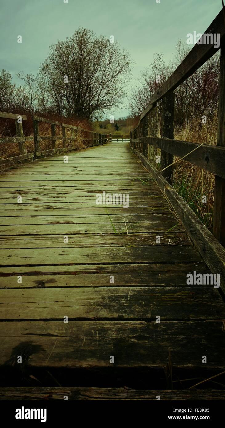 En primer plano la superficie de paneles de madera a lo largo de barandillas Imagen De Stock