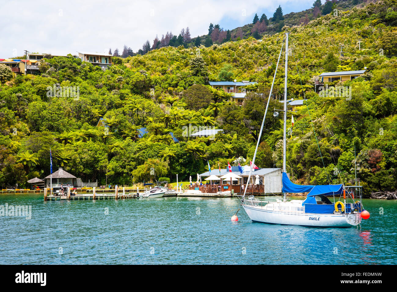 Barcos en Punga Cove Endeavour Marlborough Sounds, Entrada de Nueva Zelanda Imagen De Stock