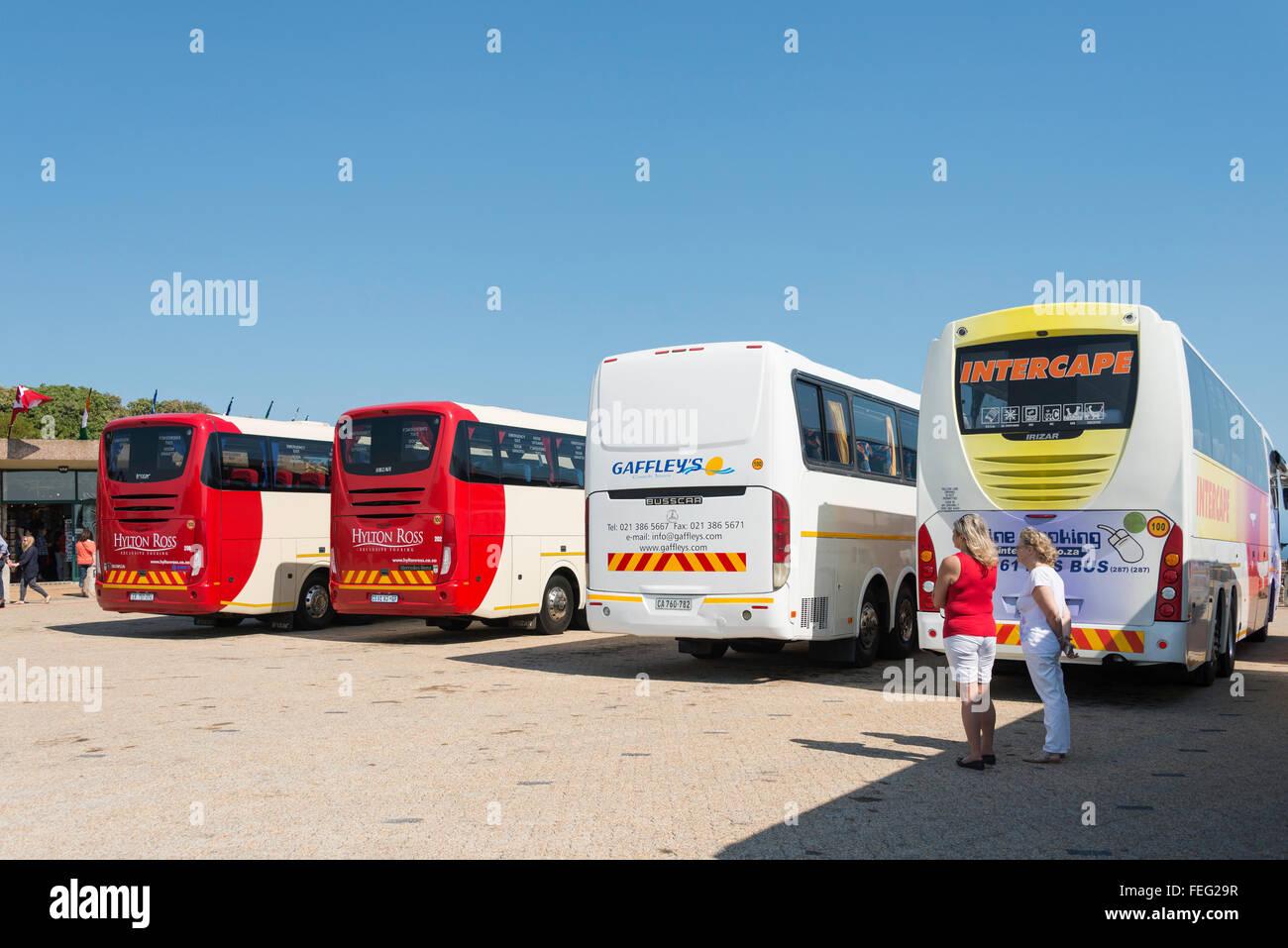 Los autobuses de excursión en la estación del Funicular de Cape Point, el Cabo de la Buena Esperanza, Imagen De Stock