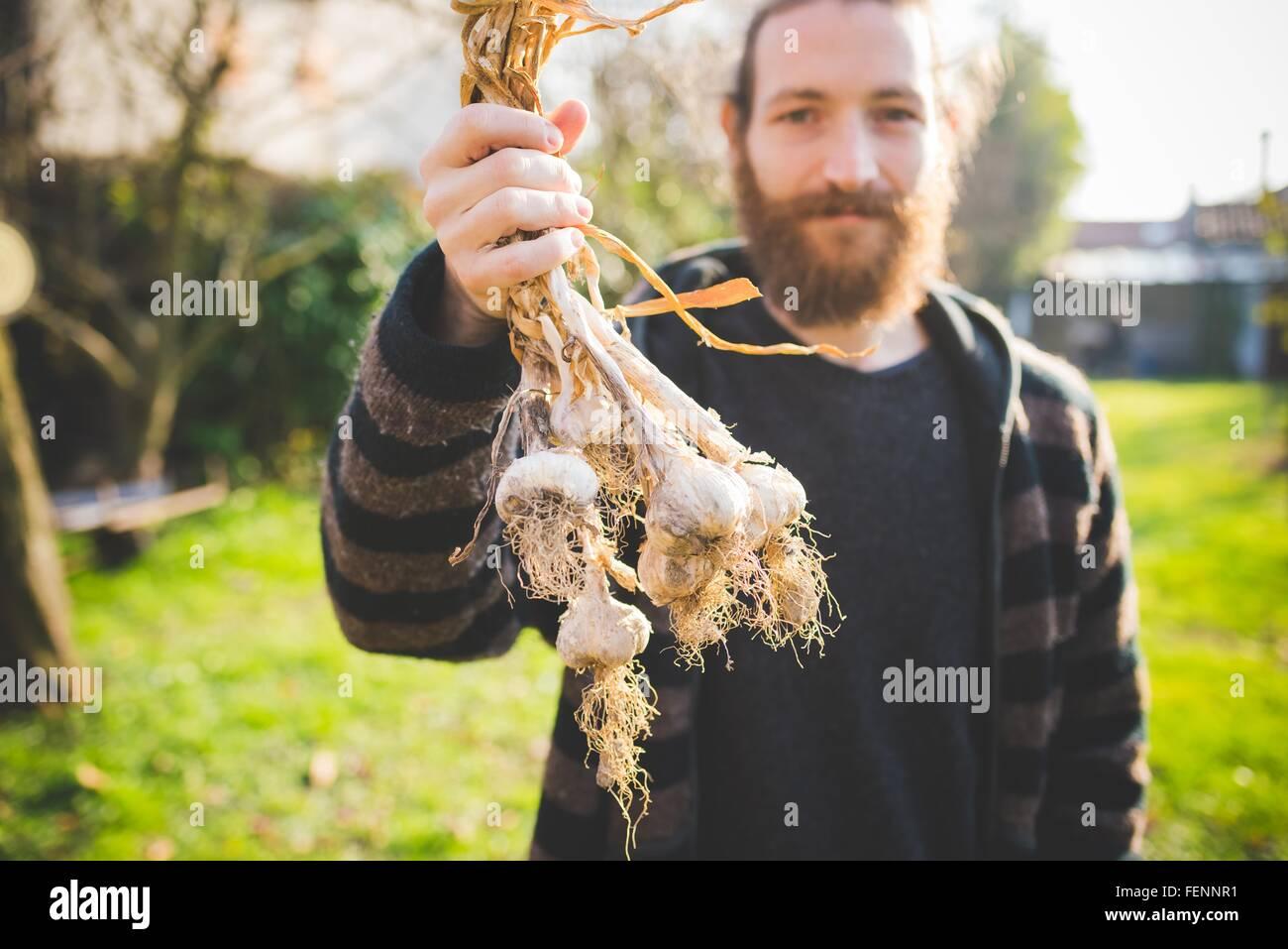 A mediados barbudo hombre adulto en el jardín la celebración recién elegido bulbos de ajo mirando Imagen De Stock