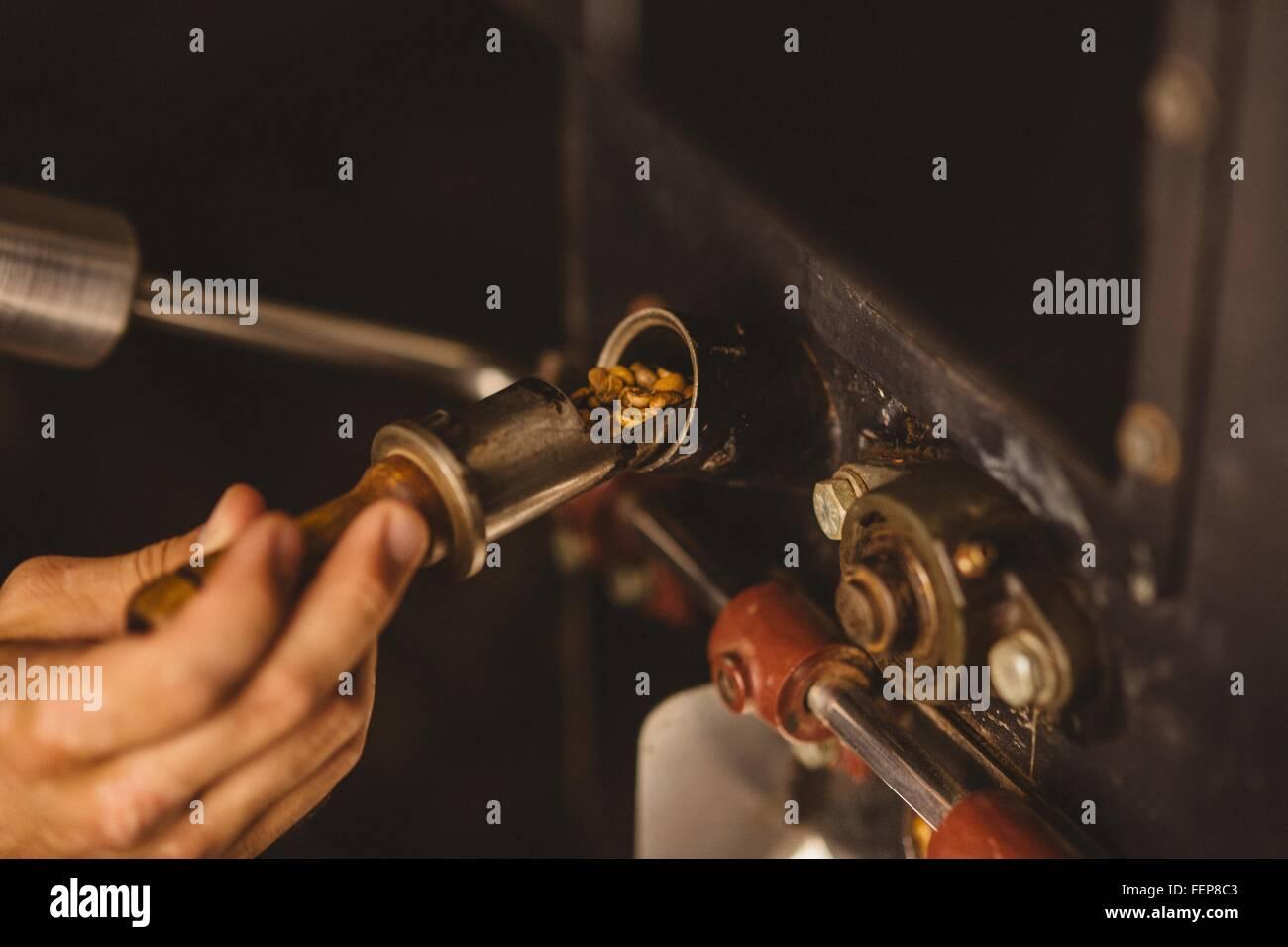 Hombre verter los granos de café en COFFEE ROASTER, close-up Imagen De Stock