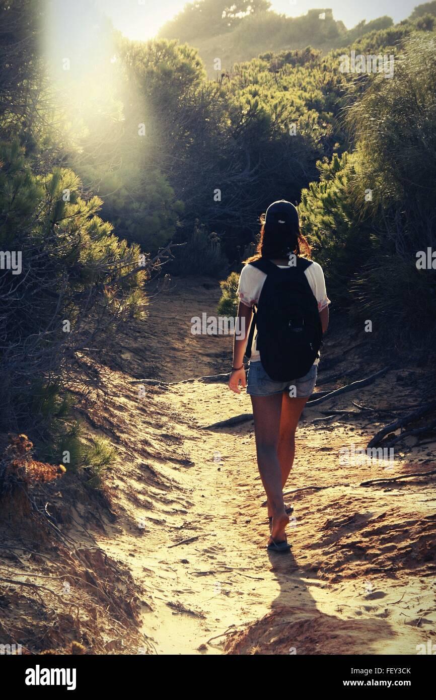 Vista trasera de la mujer Caminante en la carretera de tierra en el bosque Imagen De Stock