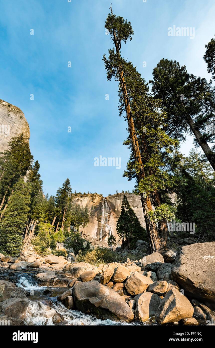 Río Merced con Nevada caída, vapor Trail, el Parque Nacional Yosemite, California, EE.UU., América Imagen De Stock