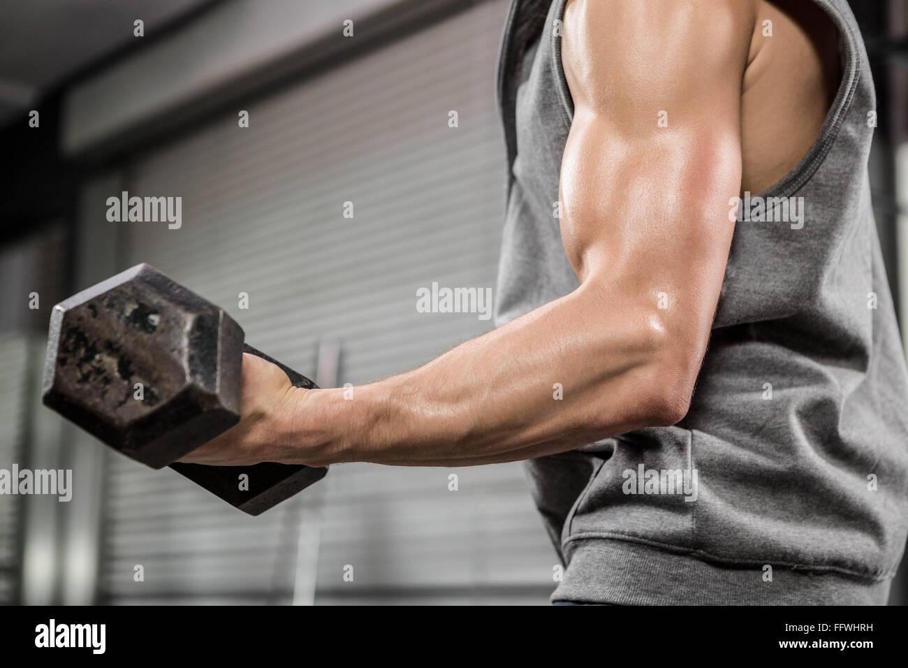 El hombre muscular con gris puente pesa de elevación Imagen De Stock