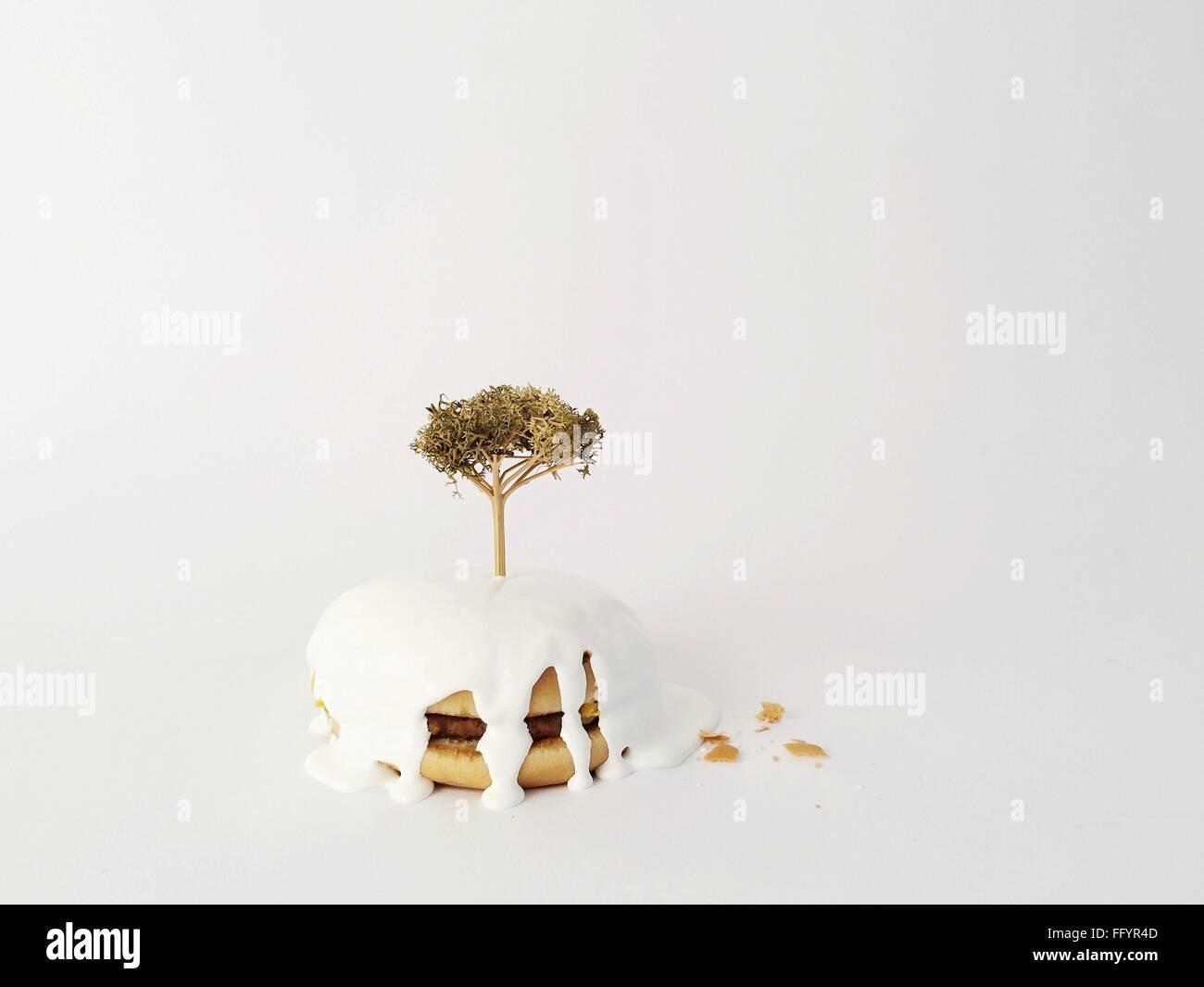 Planta de Burger contra el fondo blanco. Imagen De Stock