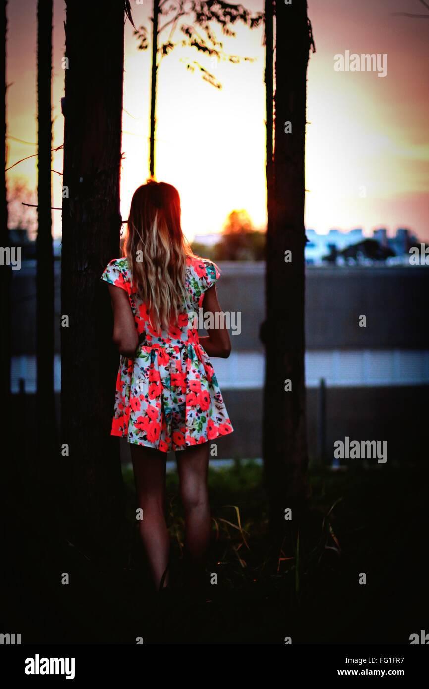 Vista trasera de la chica que llevaba vestidos florales por el árbol permanente Imagen De Stock