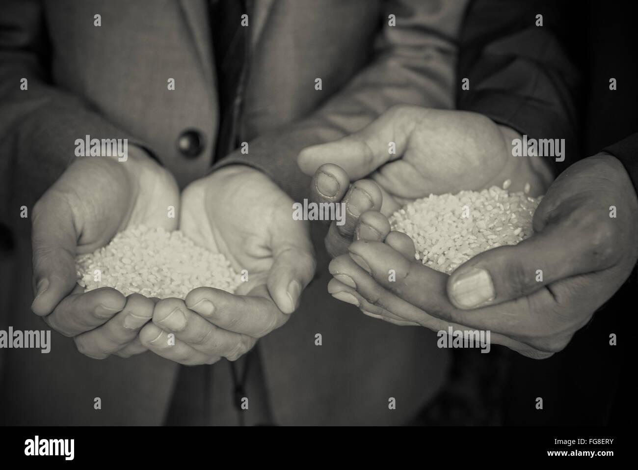 Recortado manos sosteniendo el arroz Imagen De Stock