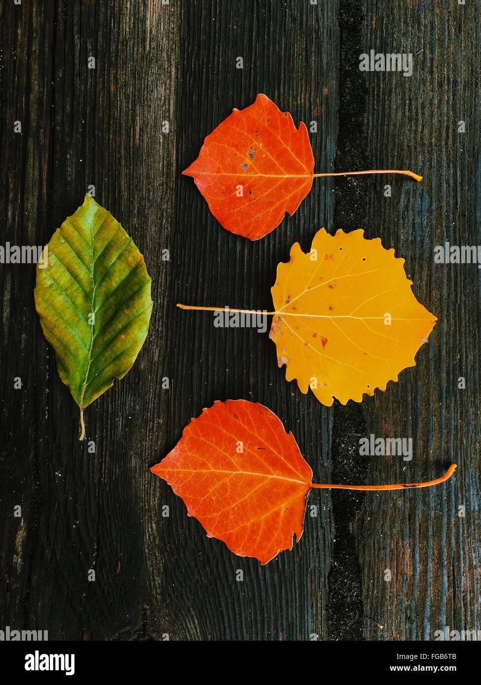 Un alto ángulo de visualización de hojas de otoño en la tabla Imagen De Stock
