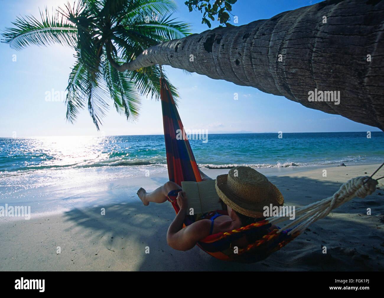 Una mujer en una hamaca leyendo un libro debajo de una palmera de coco dobladas sobre el agua en una playa en la Imagen De Stock