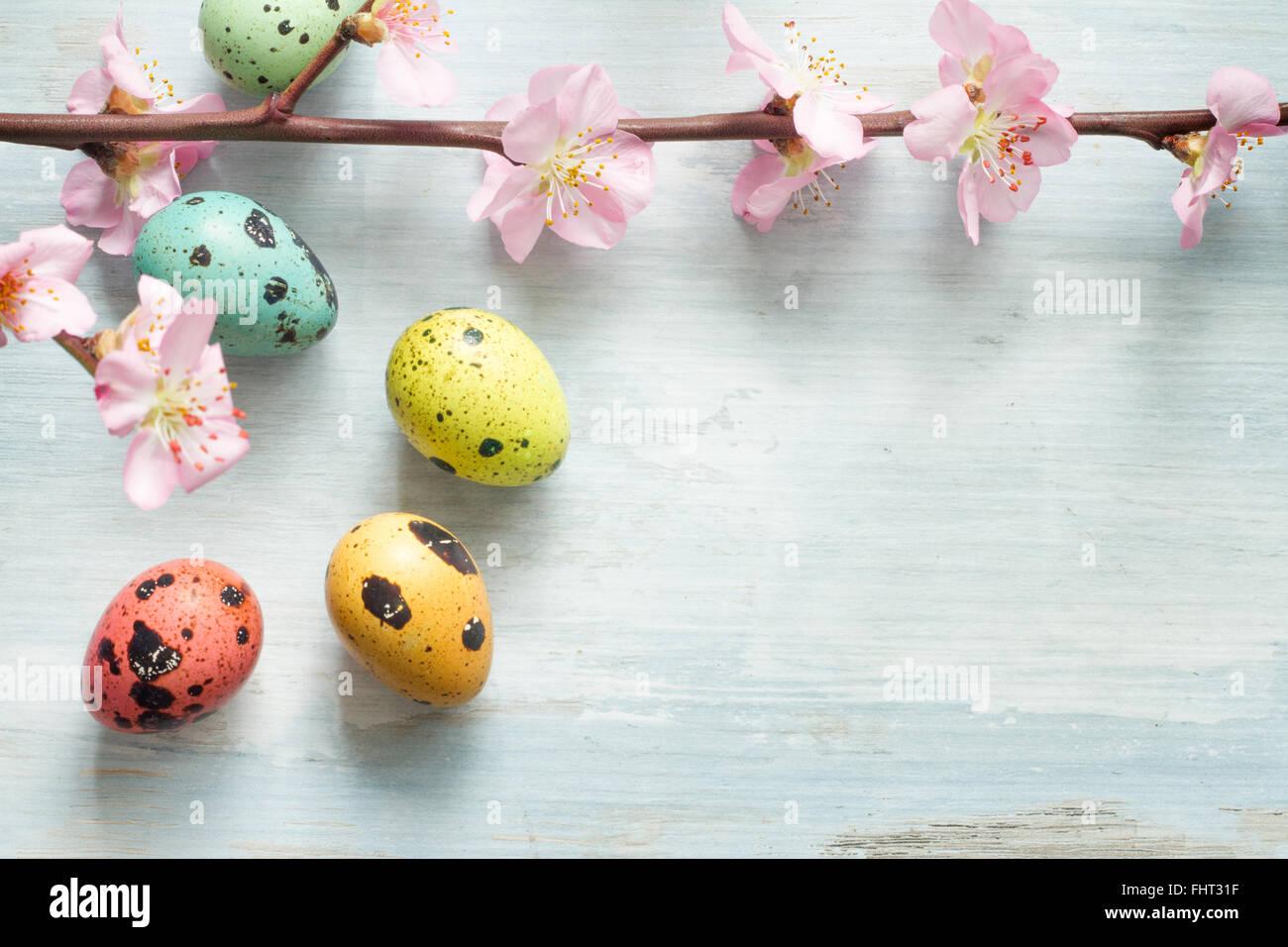 Huevos de Pascua de flores de cerezo y abstracto de fondo retro Imagen De Stock