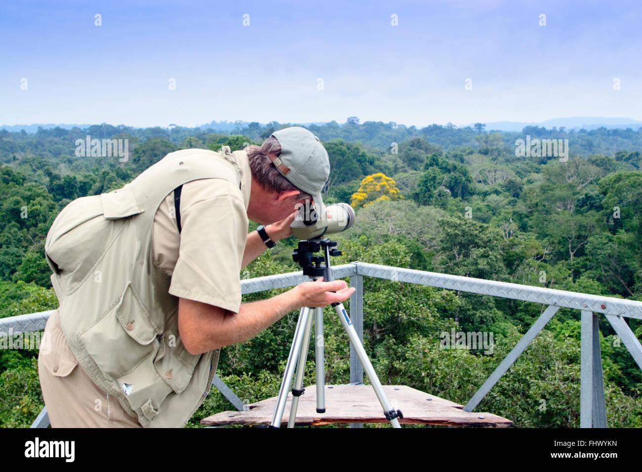 En Birdwatcher Cristalino Jungle Lodge, la Amazonía Brasileña Imagen De Stock
