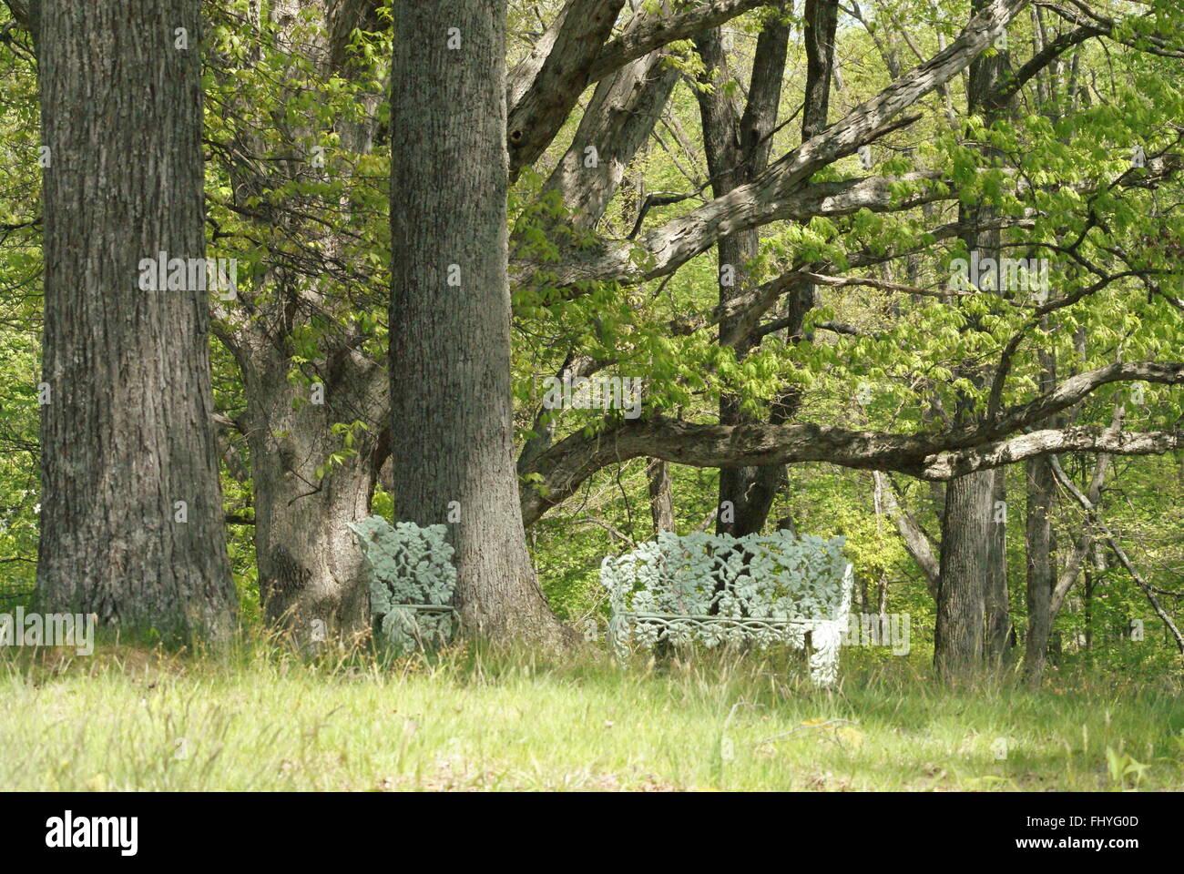 Metal blanco, muebles de exterior en la tranquilidad de los árboles ...