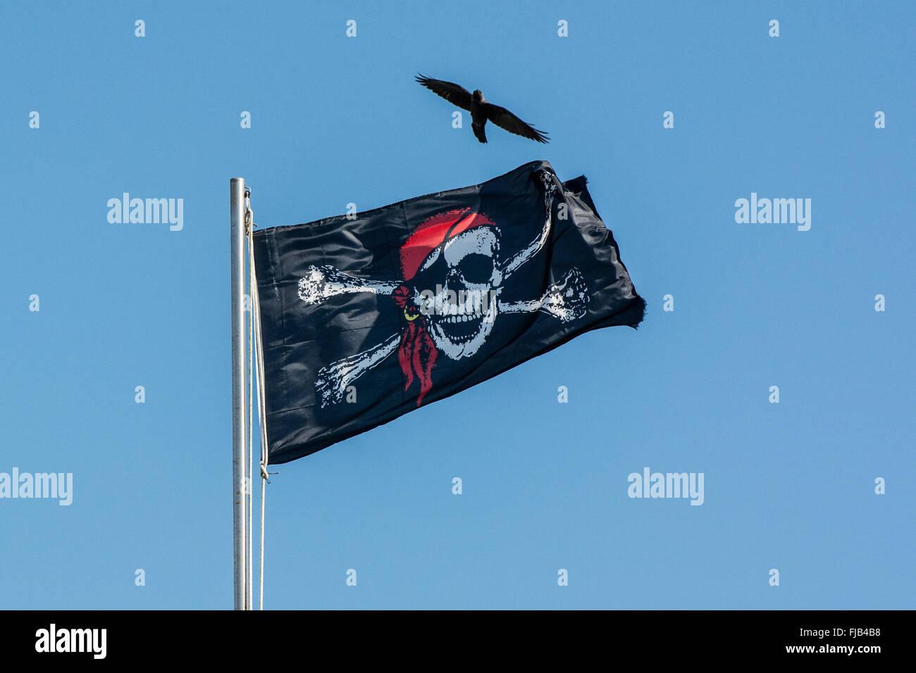 Pirata Jolly Roger bandera ondeando en la bandera del polo con crow flying Imagen De Stock