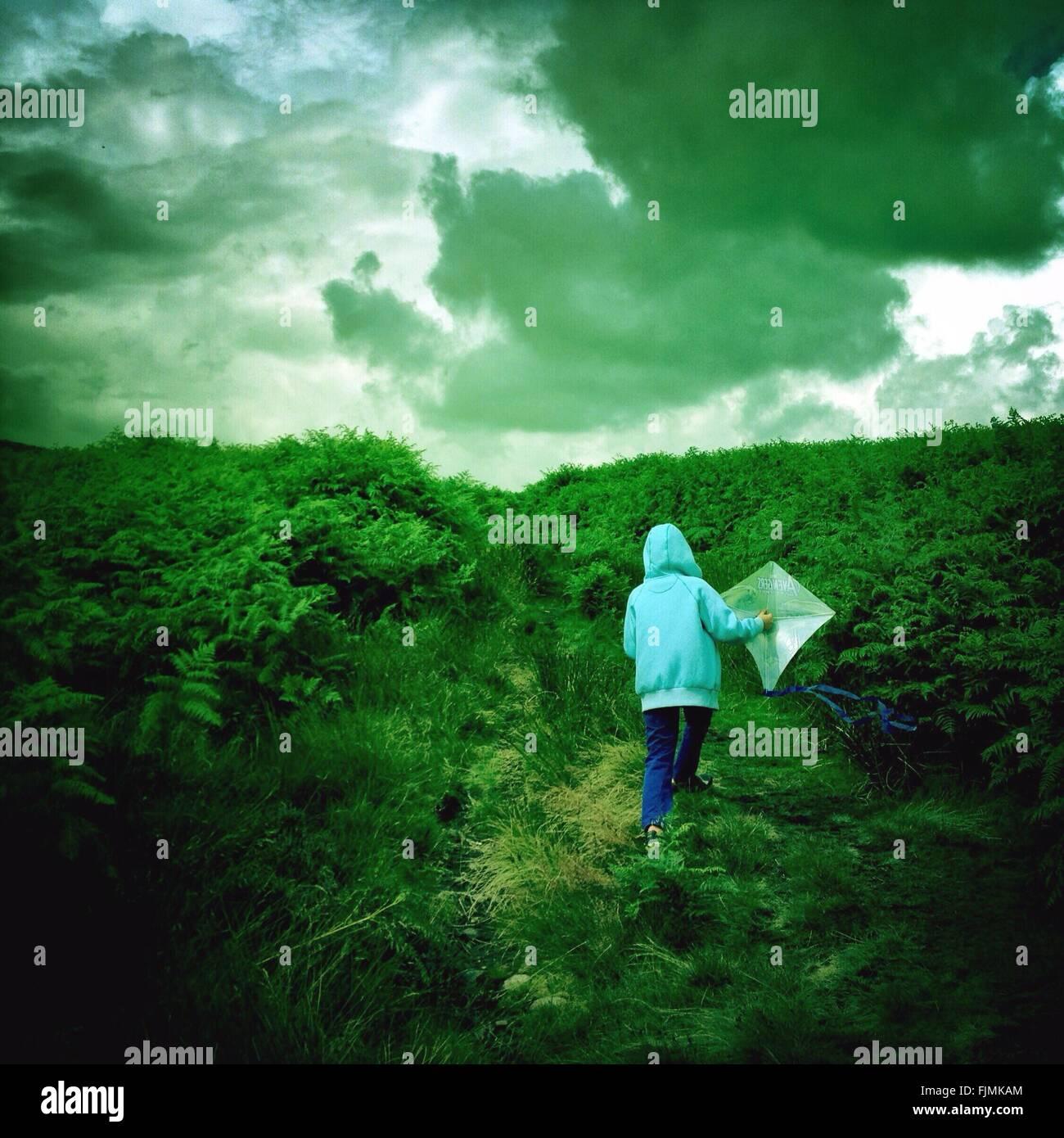 Vista trasera del muchacho en el capó con Kite caminando sobre el paisaje verde contra el cielo nublado Imagen De Stock