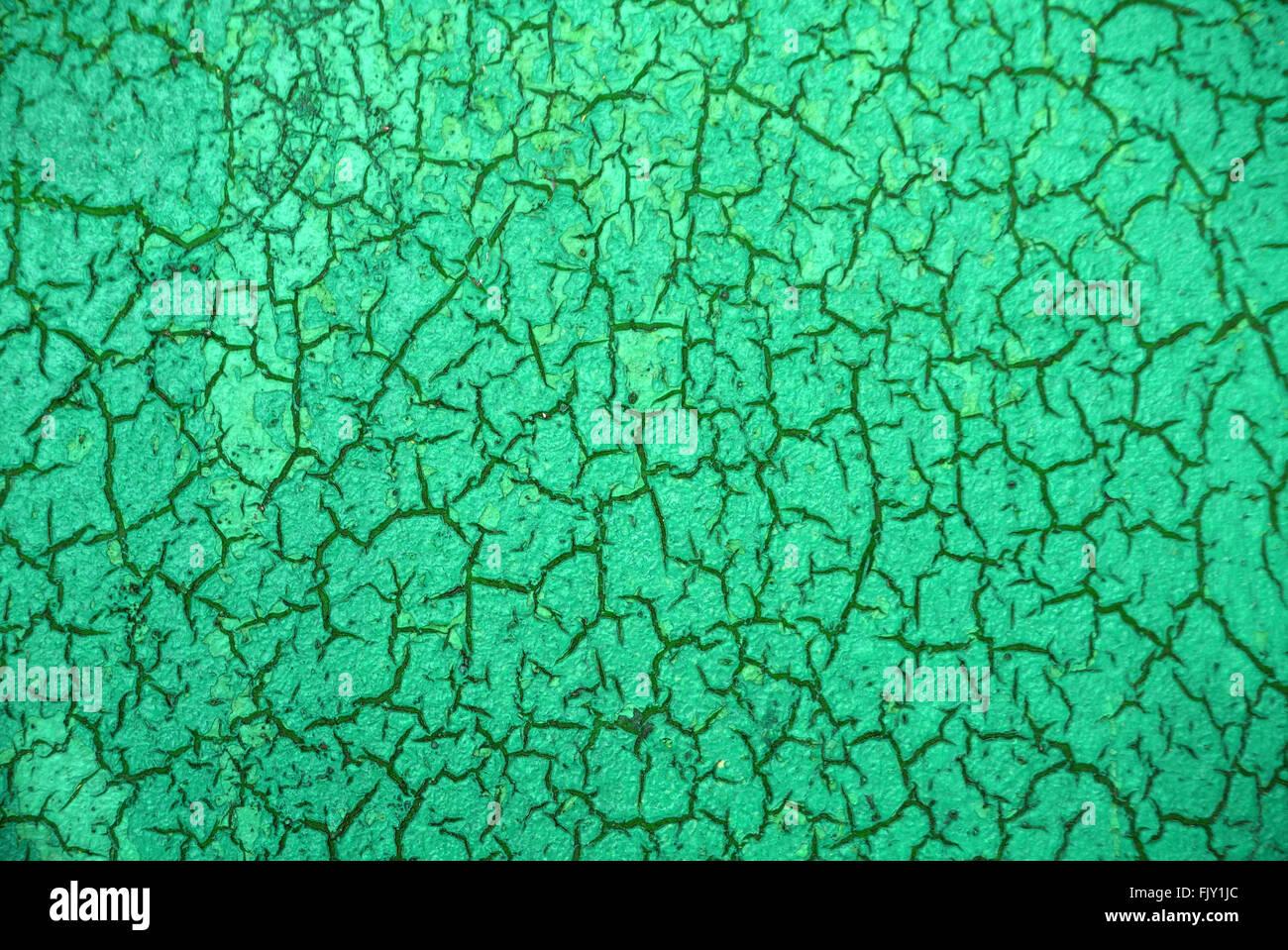 Disparo de fotograma completo de pared con textura verde Imagen De Stock