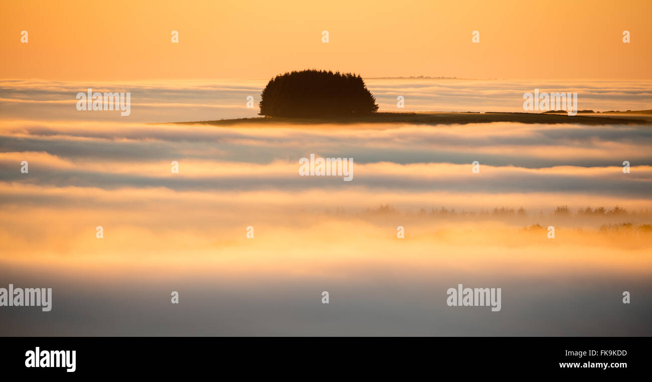 Las nubes bajas a lo largo de Exmoor National Park, Somerset, Inglaterra, Reino Unido. Imagen De Stock