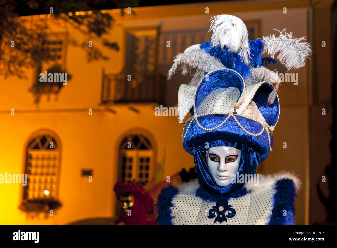 Reveler con mascara celebrando Carnevale di Venezia llamado Imagen De Stock