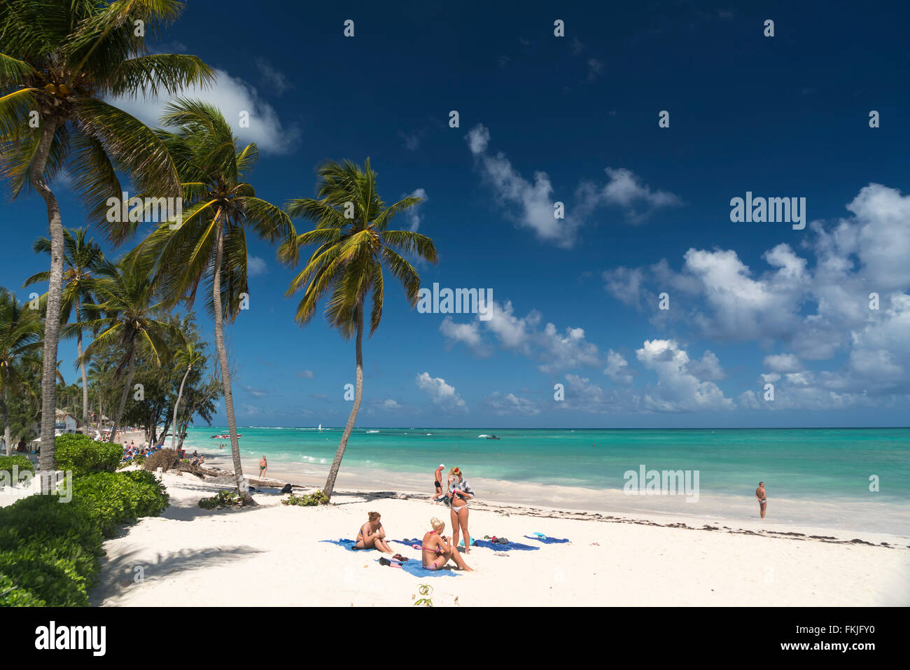 Palmeras de playa arenosa de Playa Bávaro, Punta Cana, República Dominicana, El Caribe, América, Imagen De Stock
