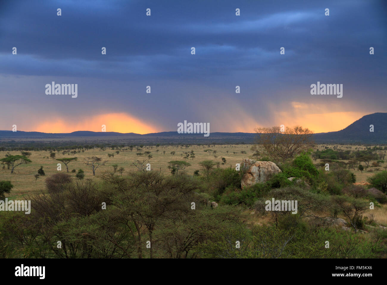 Una puesta de sol a través de las nubes de lluvia en la sabana africana Imagen De Stock
