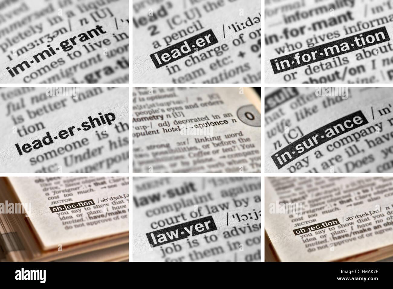 La política palabras en el diccionario. Imagen De Stock