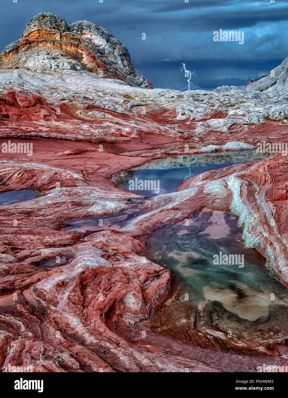 Bolsillo blanco con piscinas de agua de lluvia. Vermilion Cliffs National Monument, Arizona Imagen De Stock