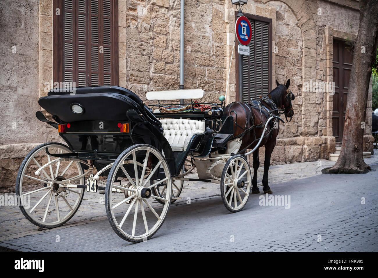 Caballo de carro en Palma de Mallorca, Islas Baleares, España. Imagen De Stock