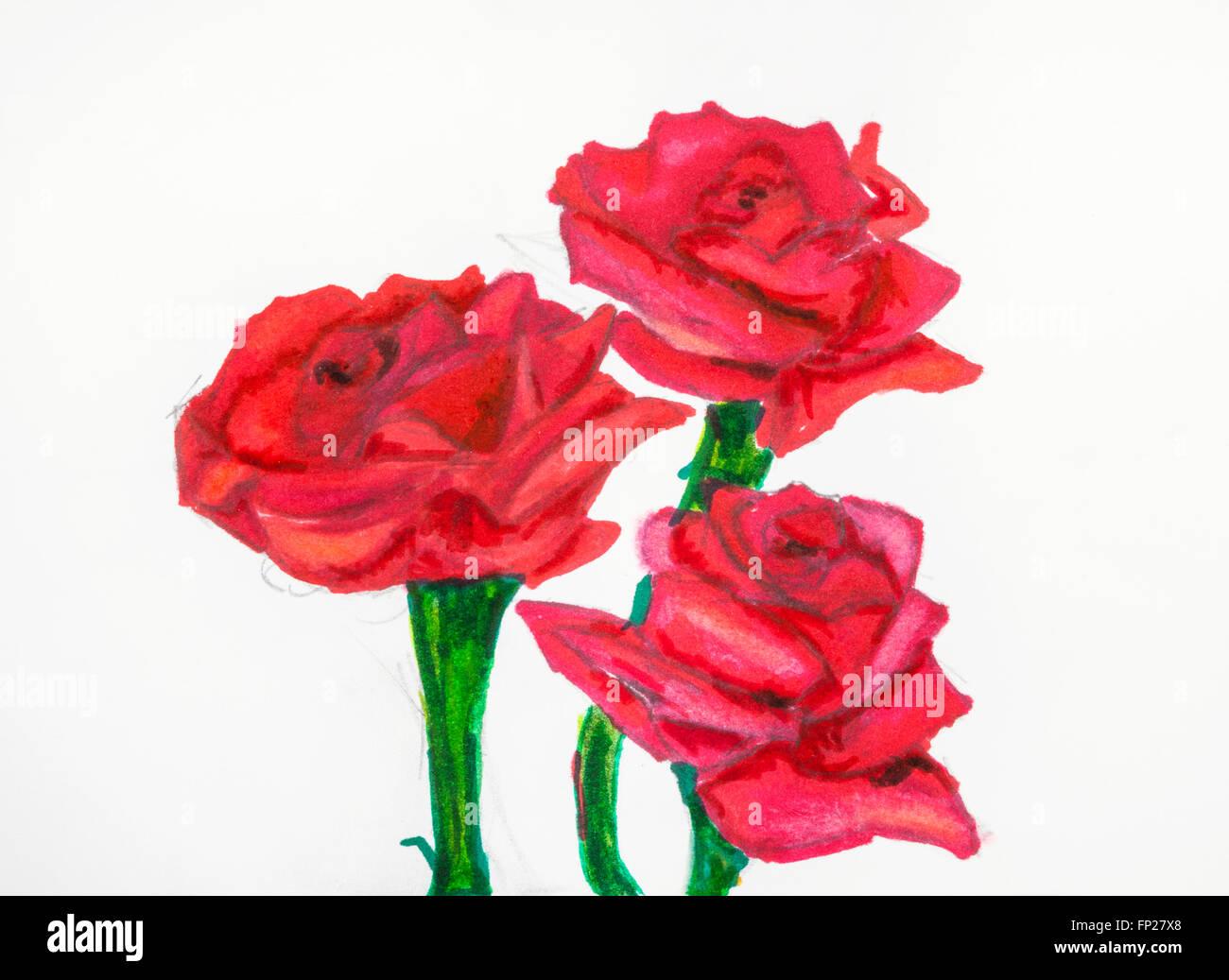 Dibujo A Mano Tres Flores Rosas Rojas En Tallos Verdes Pintadas