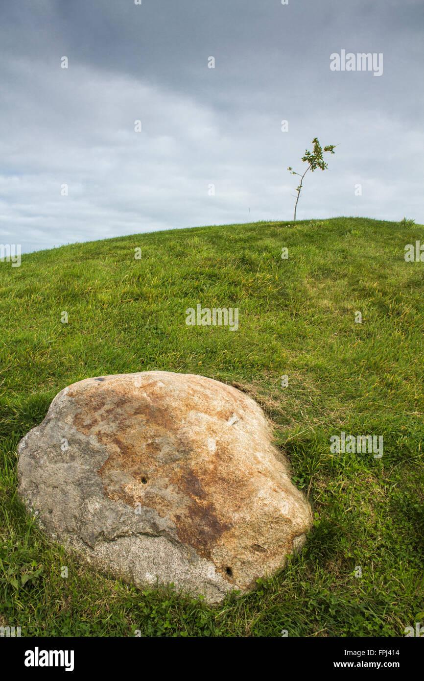 Imagen de paisaje roca grande en primer plano en la parte inferior de la colina pequeño árbol de cielo azul horizonte curvo. Libro ideal la portada de la revista Front page en vertical Foto de stock