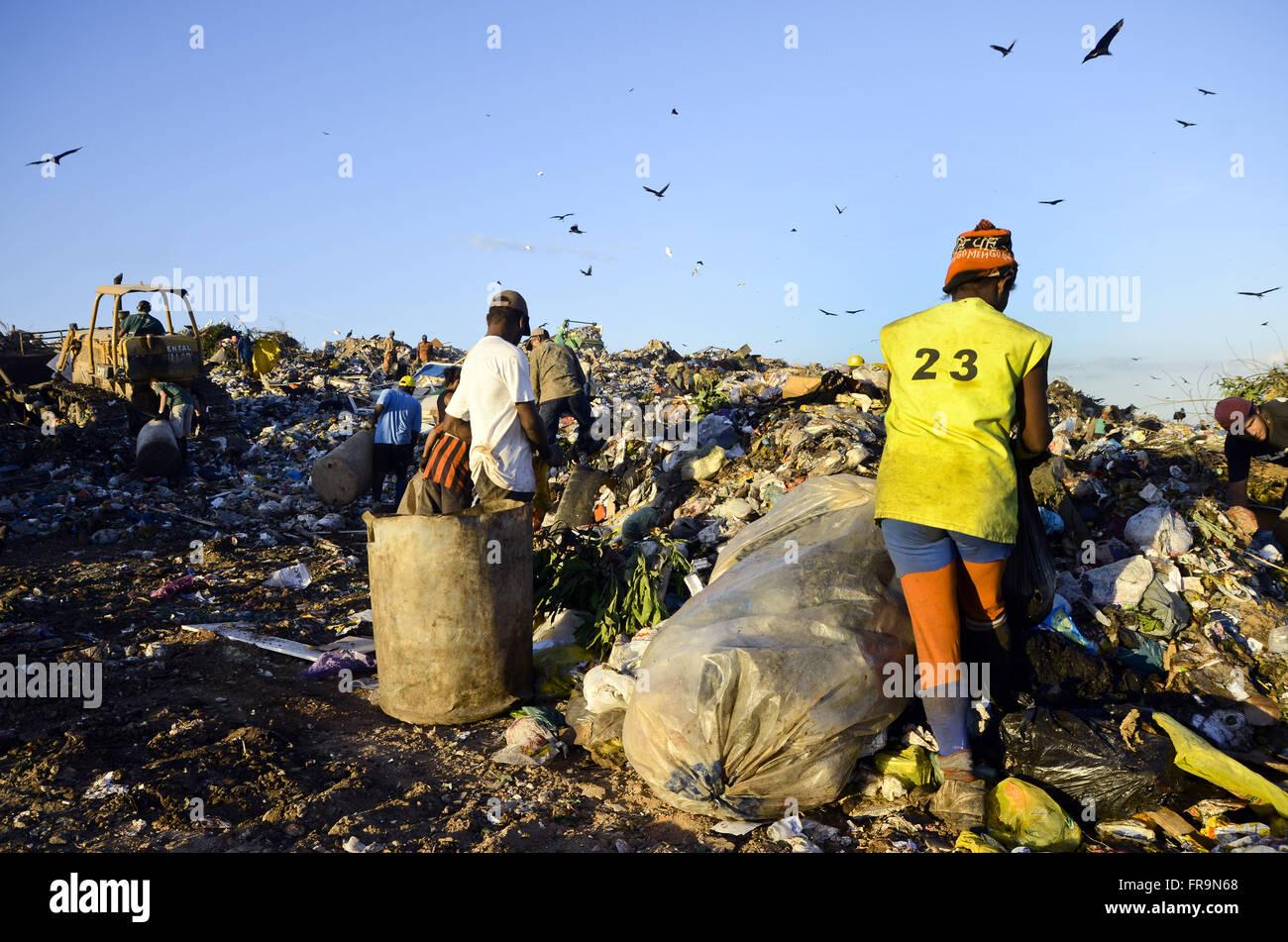 Catadores coletando reciclável lixo no Jardim Gramacho Foto de stock
