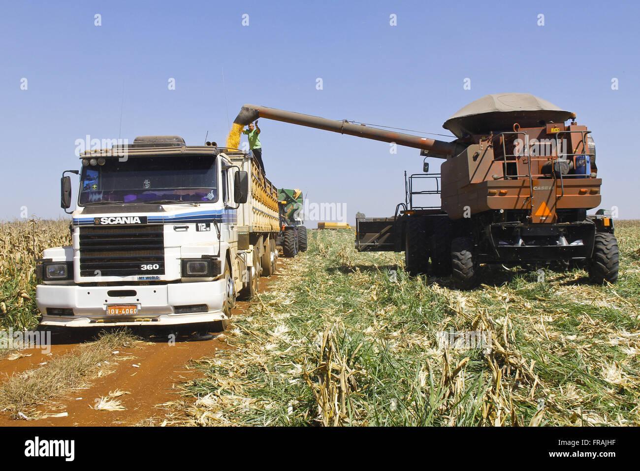 Descargar la cosechadora de maíz de carretilla. Imagen De Stock
