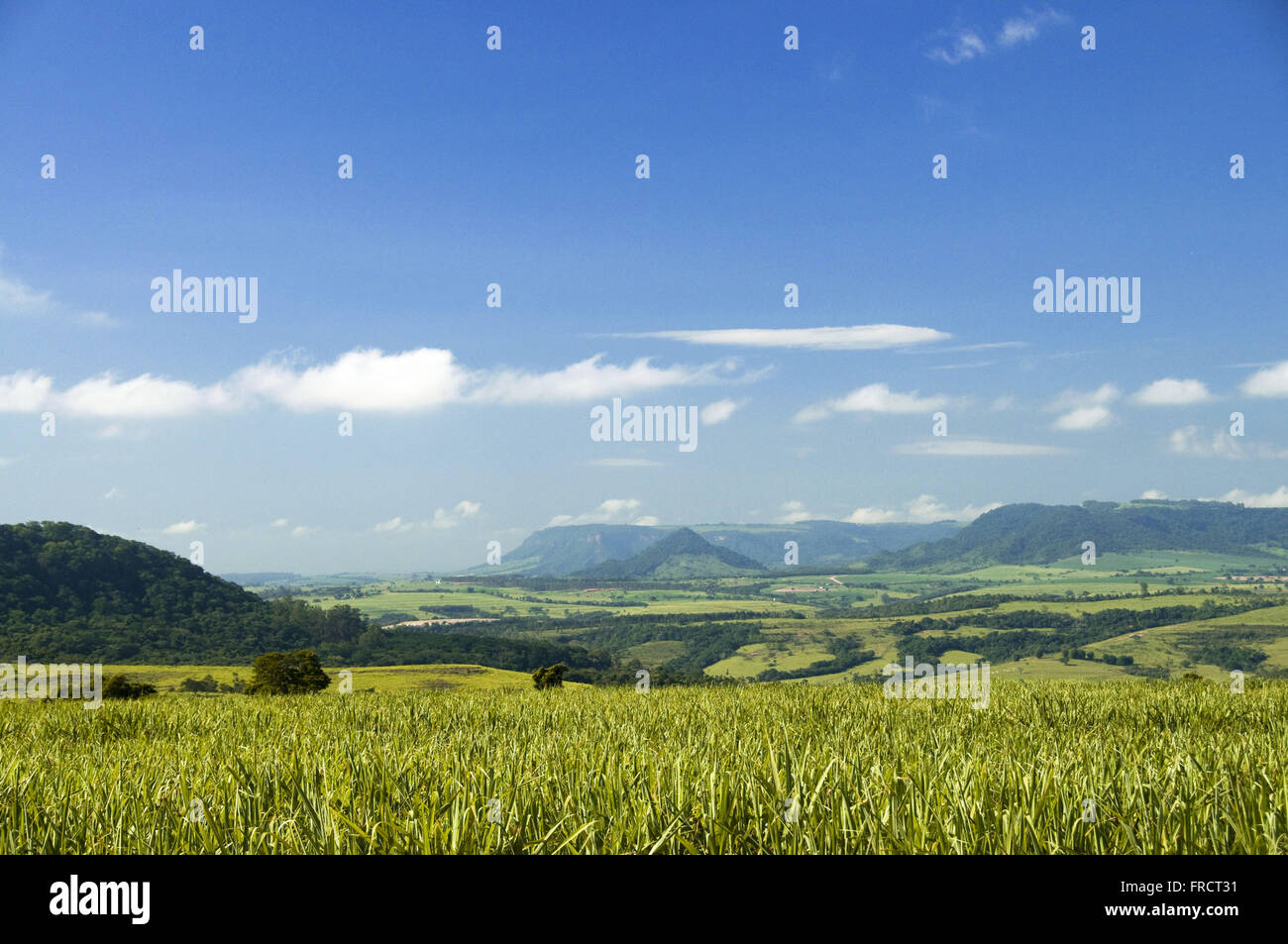 Paisaje de montañas en la región de Delicioso - Indoor SP Imagen De Stock