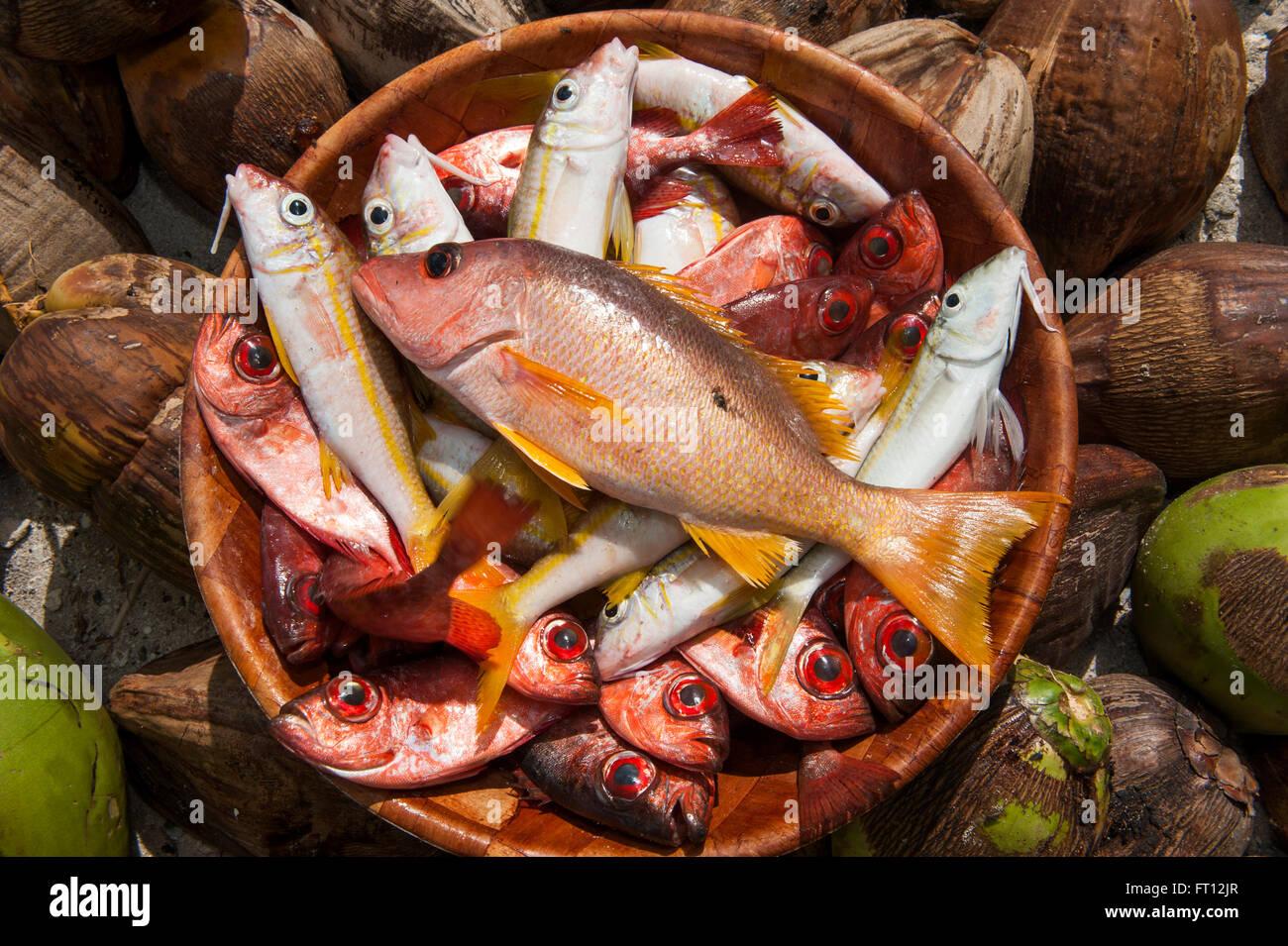 Coloridos peces para venta en un mercado, Makemo, las Islas Tuamotu, en la Polinesia Francesa, Pacífico Sur Imagen De Stock
