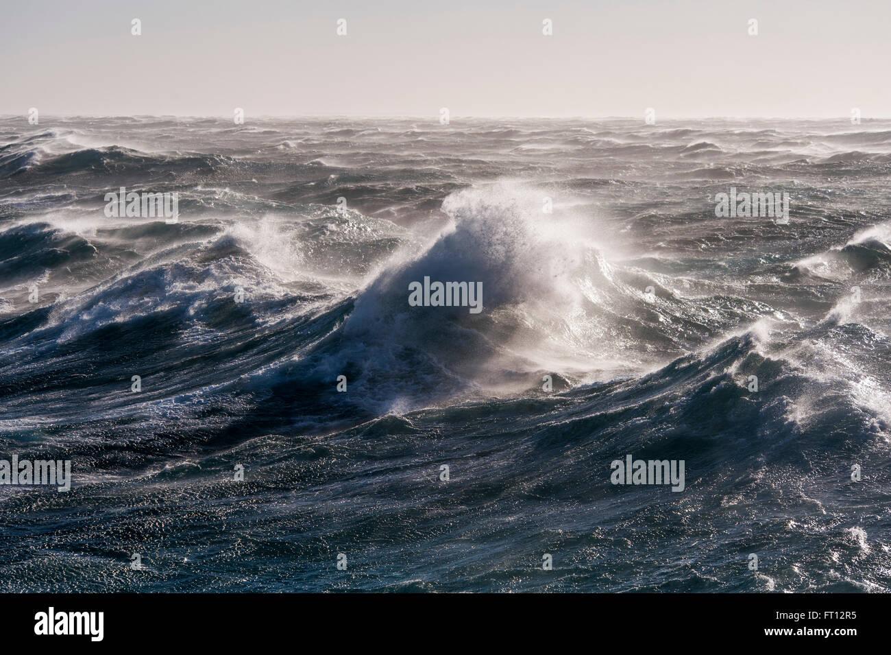 Olas Altas en extremadamente accidentado del mar en el Océano Austral, mar de Ross, en la Antártida Foto de stock