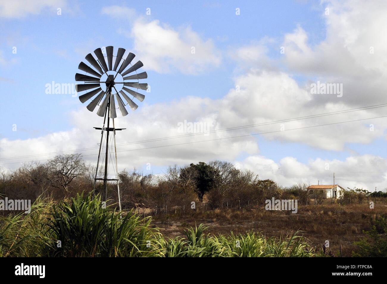 Vane en municipio rural en Pernambuco backlands Foto de stock
