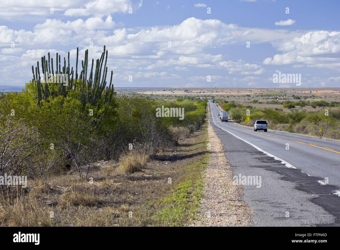 BR-116 en Bahia - región afectada por la sequía Imagen De Stock